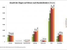 032_Almwirtschaft