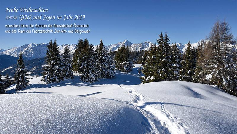 Weihnachten 2019 österreich.Ausgabe 2018 12 Der Alm Und Bergbauer Aktuelles Neuigkeiten